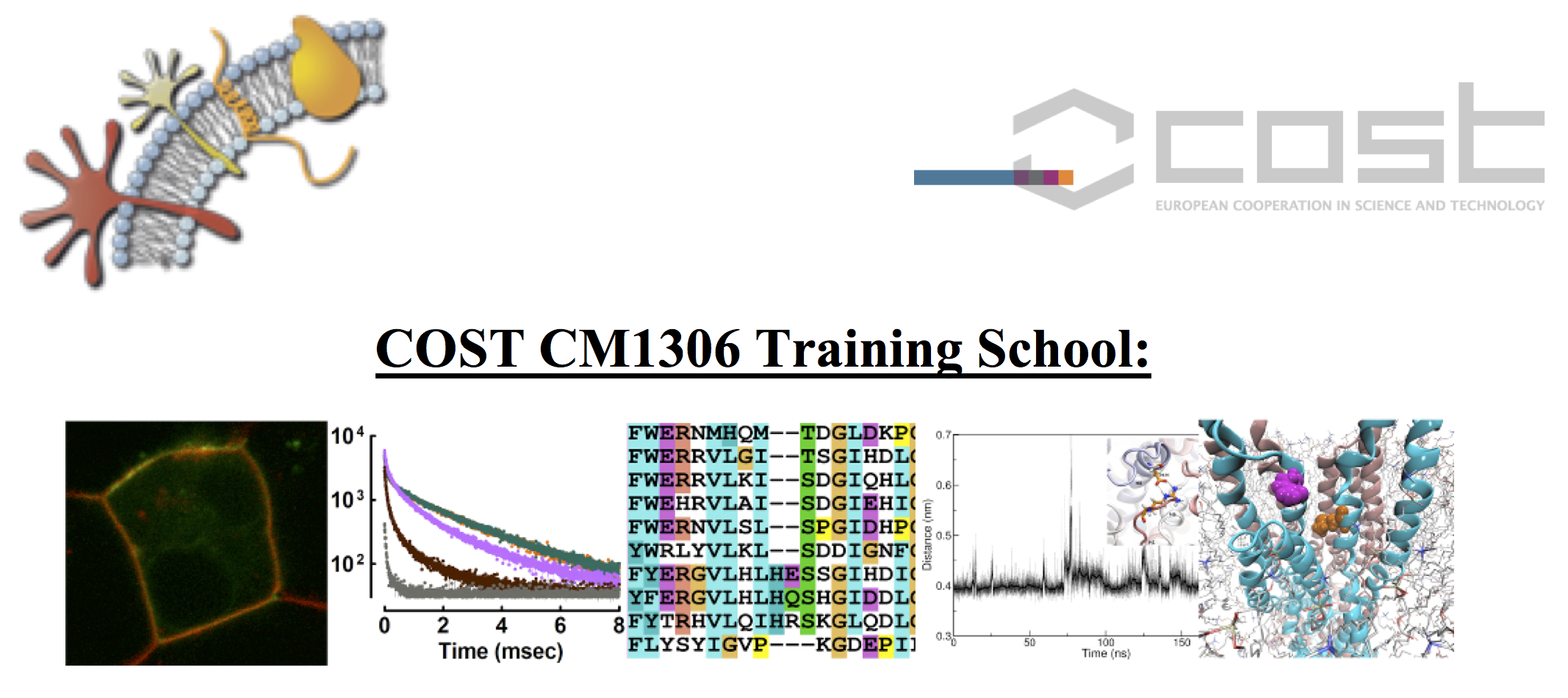 Training Schools and Workshops – CMST COST Action CM1306